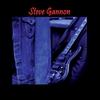 Cover of the album Steve Gannon