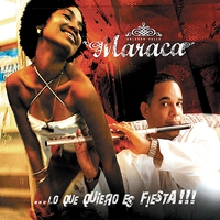 Cover of the track Lo que quiero es Fiesta