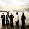 Cover of the album Whitelake