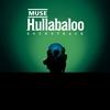 Couverture de l'album Hullabaloo Soundtrack