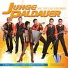 Cover of the album A Bass, A Gitarr Und A Ziehharmonika - Junge Paldauer