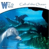 Couverture de l'album Call of the Ocean