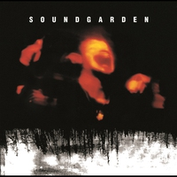 Cover of the track Superunknown (20th Anniversary)