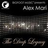 Couverture de l'album The Deep Legacy - Single