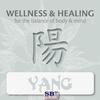 Couverture de l'album Wellness & Healing ..... Yang