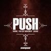 Couverture de l'album Push - Single
