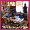 Couverture de l'album This Smudge Is True (the best of Smudge 1991-98)
