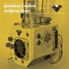 Couverture de l'album Artificial Heart