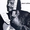 Couverture de l'album Albert Collins