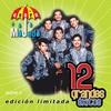 Couverture de l'album Grupo Mojado: 12 Grandes Exitos, Vol. 2