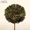 Couverture de l'album Cartel (Bonus Track Version)