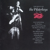 Couverture de l'album The Best of The Waterboys: '81 - '90