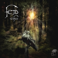 Cover of the track Eifur