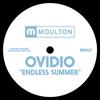 Couverture de l'album Endless Summer - Single