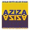 Couverture de l'album AZIZA (feat. Dave Holland, Chris Potter, Lionel Loueke, Eric Harland)
