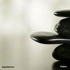 Couverture de l'album Equilibrium