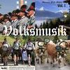 Couverture de l'album Volksmusik Vol.1