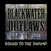 Cover of the album Bound To the Swamp