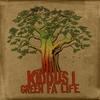 Cover of the album Green Fa Life