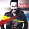 Cover of the album Tanıdık