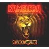 Couverture de l'album Vibra sound