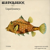 Cover of the track Liquid Journeys