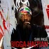 Cover of the album Sak Pasé