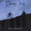 Cover of the album Deep Joy