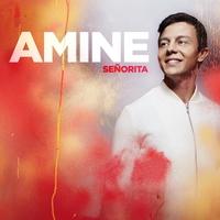 Couverture du titre Señorita - Single