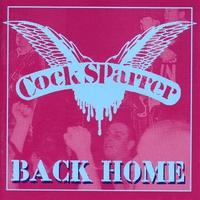 Couverture du titre Back Home