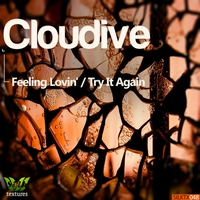 Cover of the track Feeling Lovin' / Try It Again - Single