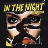 Couverture du titre In the Night