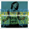 Cover of the album Samba Tzigane