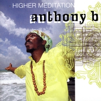 Cover of the track Higher Meditation