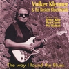Couverture de l'album The Way I Found the Blues