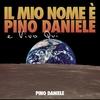 Couverture de l'album Il mio nome è Pino Daniele e vivo qui