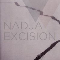 Cover of the track Excision
