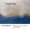 Couverture de l'album Imaginings