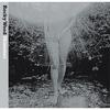 Couverture de l'album Shimmer
