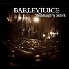 Cover of the album Skulduggery Street