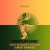 Couverture de l'album Sunset (Remixes) [feat. Marques Toliver]