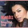 Couverture de l'album Beautiful Soul