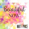 Couverture de l'album Beautiful Now - Single