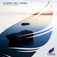 Cover of the track Euphoric - Single