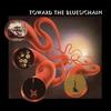 Couverture de l'album Toward the Blues