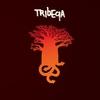 Cover of the album Tribeqa