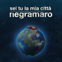 Cover of the track Sei tu la mia città
