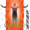 Cover of the album Sun Walker