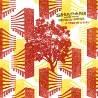 Cover of the track A Tree In a City