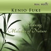 Cover of the album Relaxing Melodies Of Nature